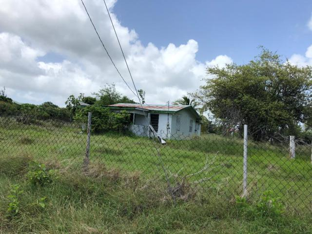 67F Whim (Two Williams) We, St. Croix, VI 00840 (MLS #19-1063) :: Hanley Team | Farchette & Hanley Real Estate