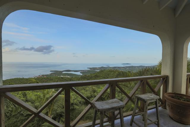 49 Recovery Hill Co, St. Croix, VI 00820 (MLS #19-1066) :: Hanley Team   Farchette & Hanley Real Estate