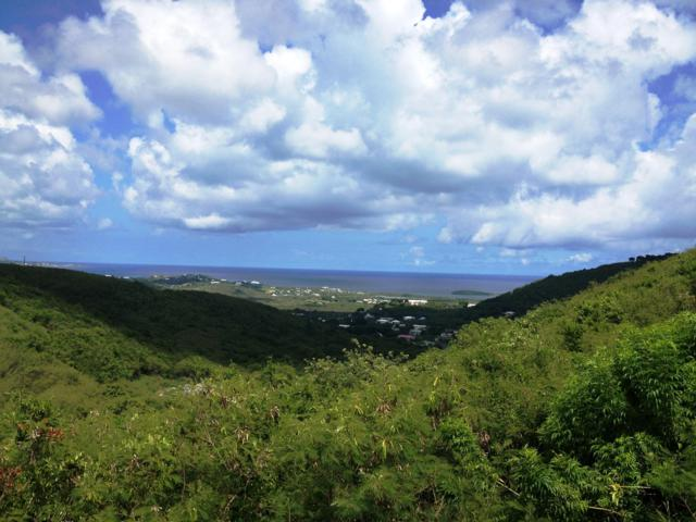 338A Union & Mt. Washington Ea, St. Croix, VI 00820 (MLS #19-1077) :: Hanley Team | Farchette & Hanley Real Estate