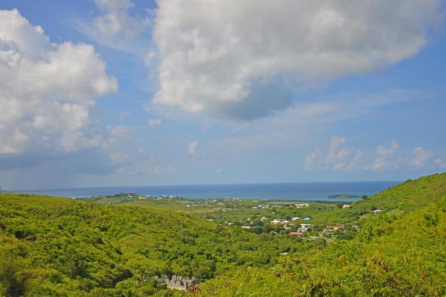 343-345 Union & Mt. Washington Ea, St. Croix, VI 00820 (MLS #19-1083) :: Hanley Team | Farchette & Hanley Real Estate