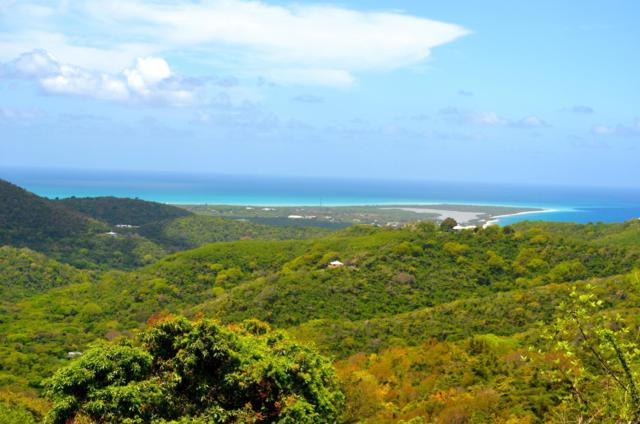 22 Oxford Na, St. Croix, VI 00840 (MLS #19-1104) :: Hanley Team | Farchette & Hanley Real Estate