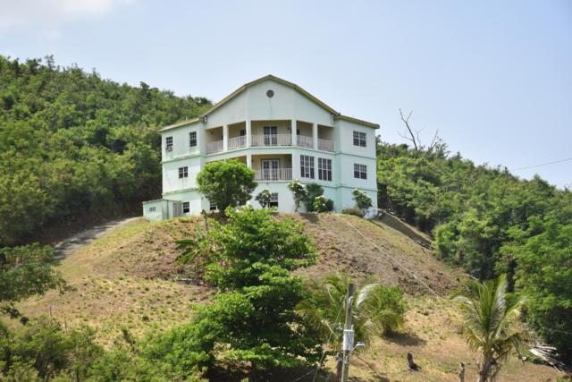 92 Frederikshaab We, St. Croix, VI 00840 (MLS #19-1124) :: Hanley Team | Farchette & Hanley Real Estate