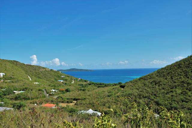 85C South Grapetree Eb, St. Croix, VI  (MLS #19-1127) :: Hanley Team | Farchette & Hanley Real Estate