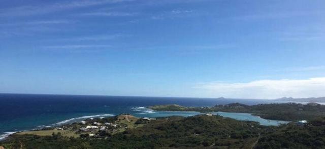 98 Concordia Nb, St. Croix, VI 00840 (MLS #19-1149) :: Hanley Team | Farchette & Hanley Real Estate