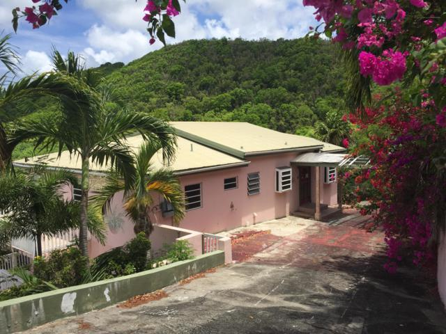 241-C La Grande Princesse Co, St. Croix, VI 00820 (MLS #19-1157) :: Hanley Team   Farchette & Hanley Real Estate