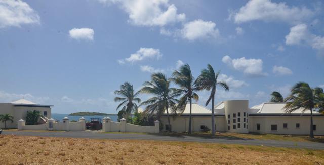 132 Green Cay Ea, St. Croix, VI 00820 (MLS #19-1185) :: Hanley Team   Farchette & Hanley Real Estate