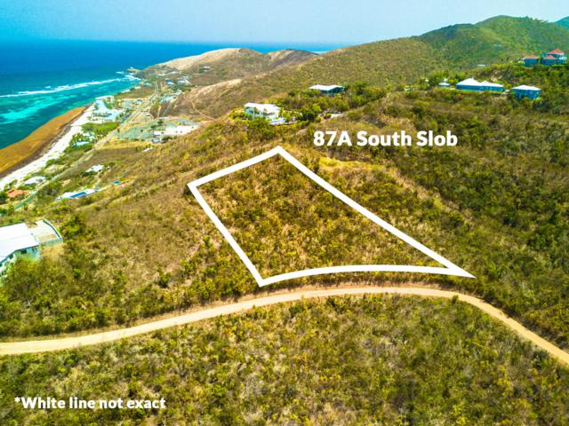 87A South Slob Eb, St. Croix, VI 00820 (MLS #19-1202) :: Hanley Team | Farchette & Hanley Real Estate