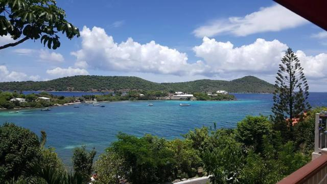 E12 Smith Bay Ee, St. Thomas, VI 00802 (MLS #19-1209) :: Coldwell Banker Stout Realty