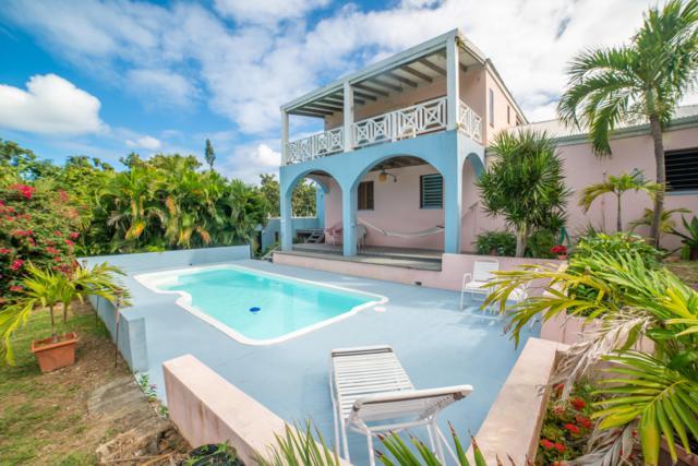 105 Southgate Farm Ea, St. Croix, VI 00820 (MLS #19-121) :: Hanley Team | Farchette & Hanley Real Estate