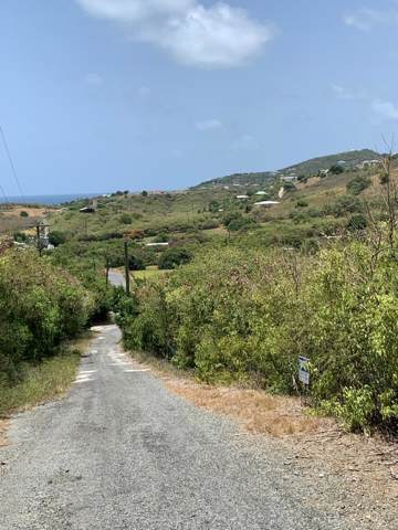 104 Solitude Eb, St. Croix, VI 00820 (MLS #19-1229) :: Coldwell Banker Stout Realty