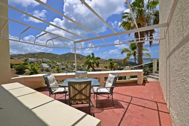 108 Teagues Bay Eb, St. Croix, VI 00820 (MLS #19-1242) :: Hanley Team | Farchette & Hanley Real Estate