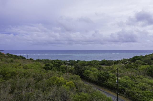 21 North Grapetree Eb, St. Croix, VI 00000 (MLS #19-1252) :: Hanley Team | Farchette & Hanley Real Estate