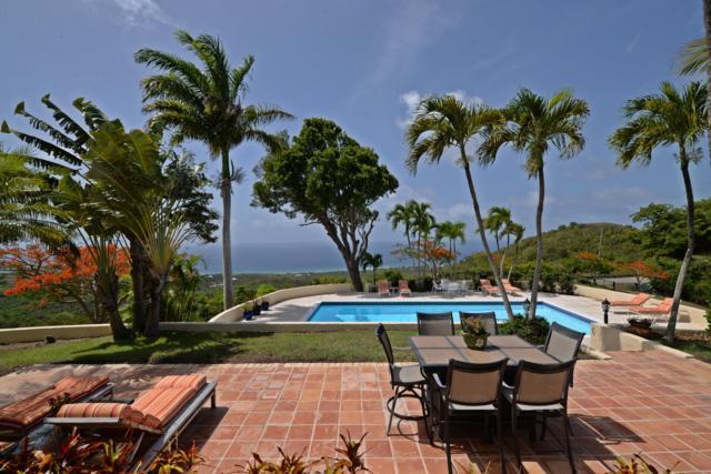 Rem 3 &3-A Betsy's Jewel Nb, St. Croix, VI 00820 (MLS #19-1260) :: Hanley Team | Farchette & Hanley Real Estate