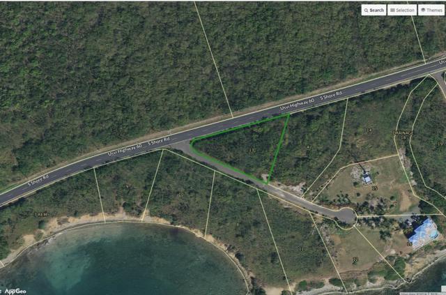 13 Wood Cottage Eb, St. Croix, VI 00820 (MLS #19-1264) :: Hanley Team | Farchette & Hanley Real Estate