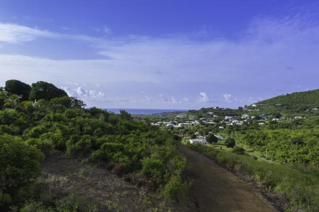 5 Union & Mt. Wash Ea, St. Croix, VI 00000 (MLS #19-1275) :: Hanley Team | Farchette & Hanley Real Estate