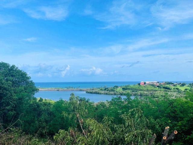66 Boetzberg Ea, St. Croix, VI 00820 (MLS #19-1302) :: Hanley Team | Farchette & Hanley Real Estate