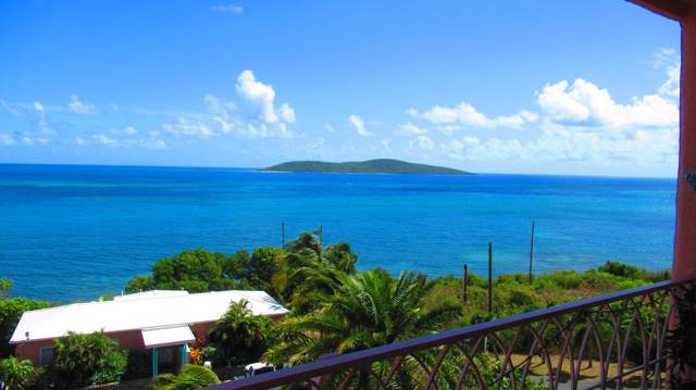 8-A Coakley Bay Eb, St. Croix, VI 00820 (MLS #19-1314) :: Hanley Team | Farchette & Hanley Real Estate