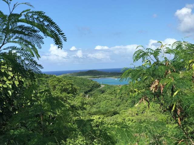 94 Salt River Nb, St. Croix, VI 00820 (MLS #19-1335) :: Hanley Team | Farchette & Hanley Real Estate
