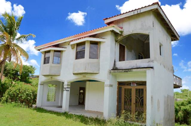 660-54 Strawberry Hill Qu, St. Croix, VI 00850 (MLS #19-1336) :: Hanley Team | Farchette & Hanley Real Estate