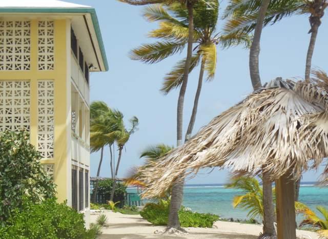 202 Golden Rock Co, St. Croix, VI 00820 (MLS #19-1339) :: Hanley Team | Farchette & Hanley Real Estate