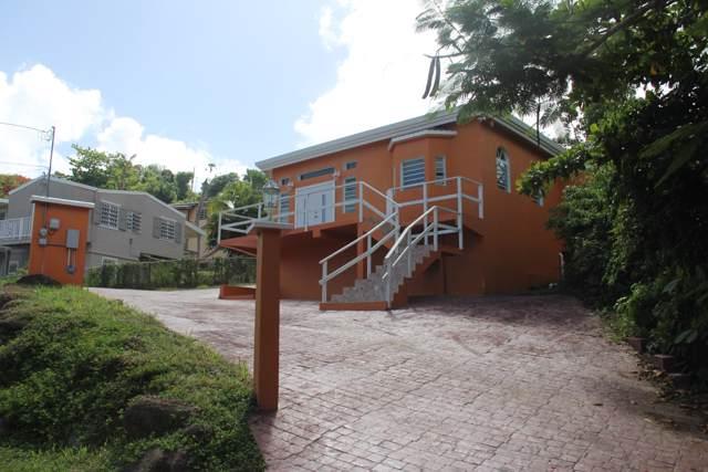 12A-11 St. Joseph & Rosendahl Gns, St. Thomas, VI 00802 (MLS #19-1347) :: Hanley Team | Farchette & Hanley Real Estate