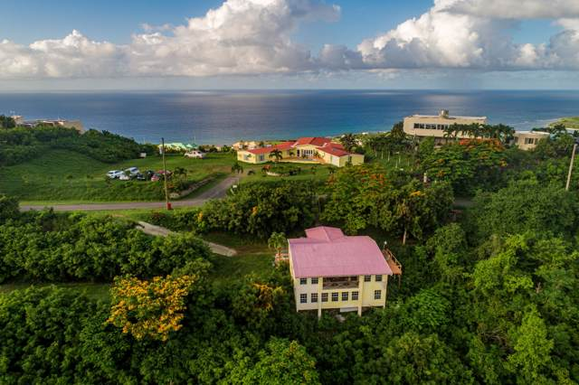 18 & 18A Concordia Nb, St. Croix, VI 00820 (MLS #19-1349) :: Coldwell Banker Stout Realty