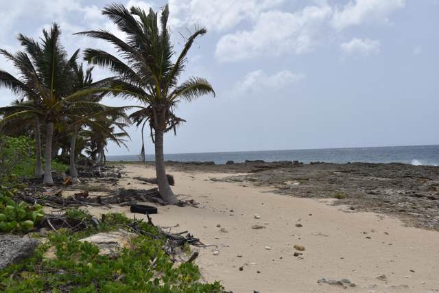 Rem. 2 Hams Bay Na, St. Croix, VI 00840 (MLS #19-1350) :: Coldwell Banker Stout Realty