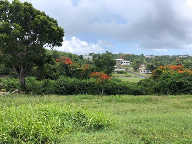 173 Mary's Fancy Qu, St. Croix, VI 00820 (MLS #19-1374) :: Hanley Team | Farchette & Hanley Real Estate