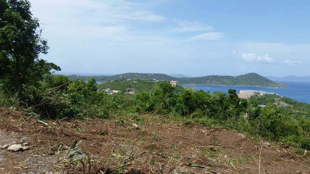 119-3-3 Smith Bay Ee, St. Thomas, VI 00802 (MLS #19-1379) :: Hanley Team | Farchette & Hanley Real Estate