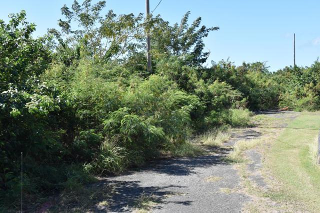 102 Cane We, St. Croix, VI 00840 (MLS #19-138) :: Hanley Team | Farchette & Hanley Real Estate