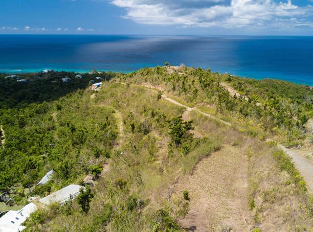4B Washington Hill Na, St. Croix, VI 00840 (MLS #19-1387) :: Coldwell Banker Stout Realty