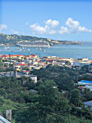 6 Staabi Gns, St. Thomas, VI 00802 (MLS #19-139) :: Coldwell Banker Stout Realty
