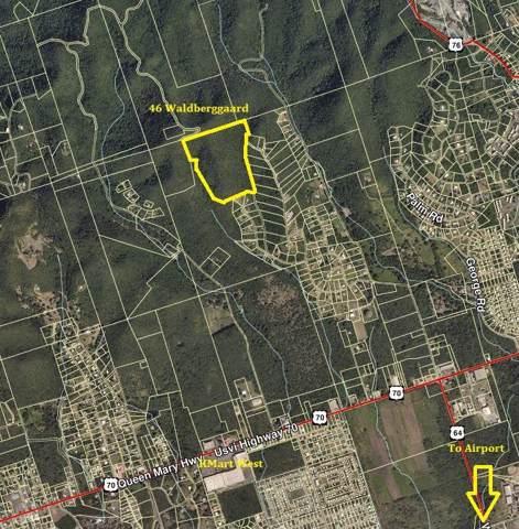 46 Walderggaard Pr, St. Croix, VI 00000 (MLS #19-1412) :: Hanley Team | Farchette & Hanley Real Estate