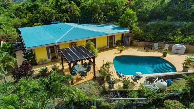 7-A Little Princ Hil Co, St. Croix, VI 00820 (MLS #19-1428) :: Hanley Team | Farchette & Hanley Real Estate