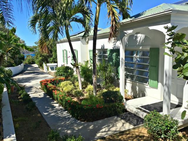 C-14 Lovenlund Gns, St. Thomas, VI 00802 (MLS #19-143) :: Coldwell Banker Stout Realty