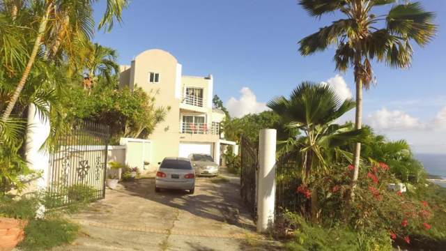 A-7-5 Ross New, St. Thomas, VI 00802 (MLS #19-1433) :: Hanley Team | Farchette & Hanley Real Estate