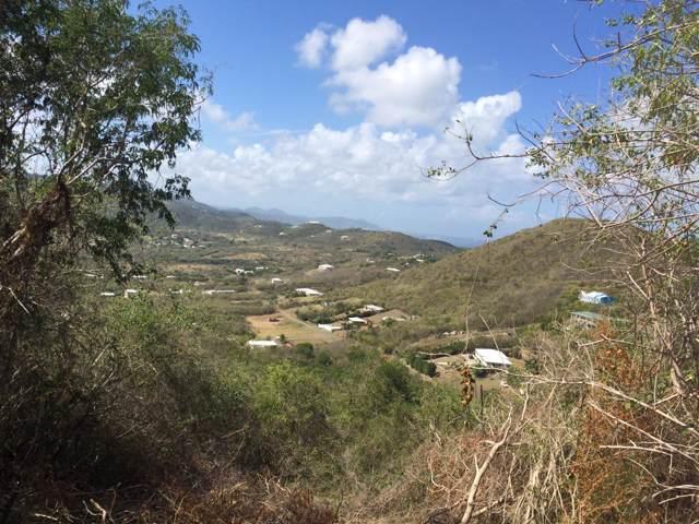 285 Union & Mt. Wash Ea, St. Croix, VI 00820 (MLS #19-1434) :: Hanley Team | Farchette & Hanley Real Estate