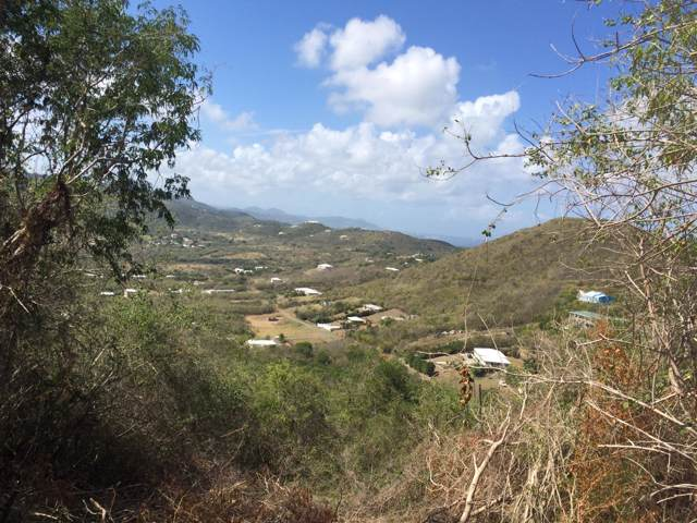 285 Union & Mt. Wash Ea, St. Croix, VI 00820 (MLS #19-1434) :: Coldwell Banker Stout Realty