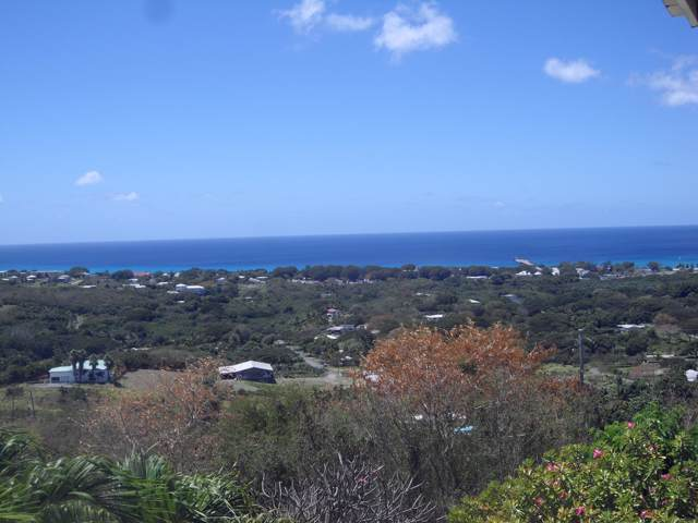 138 Frederikshaab We, St. Croix, VI 00820 (MLS #19-1443) :: Coldwell Banker Stout Realty