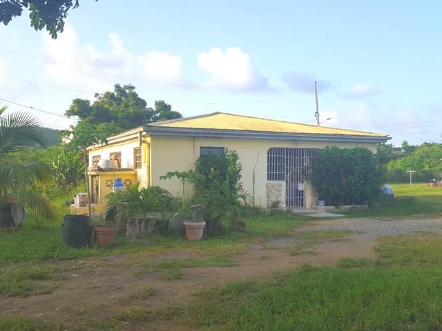62 Grove Place Pr, St. Croix, VI 00840 (MLS #19-1444) :: Hanley Team | Farchette & Hanley Real Estate