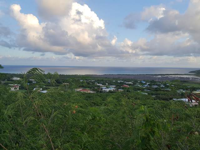 195 Union & Mt. Wash Ea, St. Croix, VI 00000 (MLS #19-1458) :: Hanley Team | Farchette & Hanley Real Estate