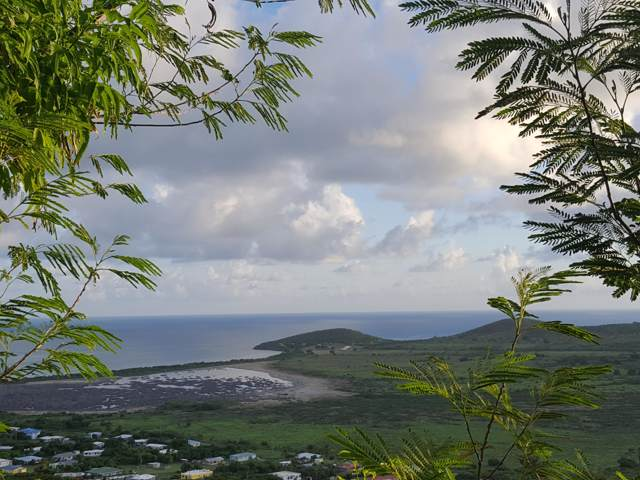 198 Union & Mt. Wash Ea, St. Croix, VI 00000 (MLS #19-1460) :: Hanley Team | Farchette & Hanley Real Estate