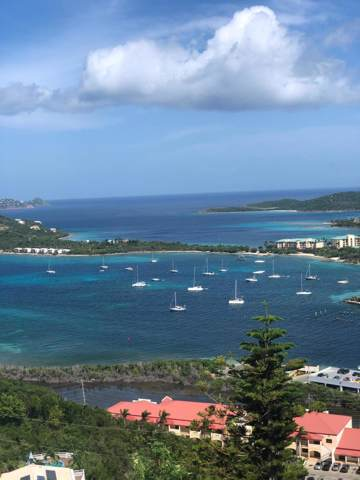 18-24 Smith Bay Ee, St. Thomas, VI 00802 (MLS #19-1464) :: Hanley Team | Farchette & Hanley Real Estate