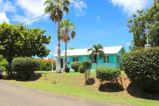377 Cotton Valley Eb, St. Croix, VI 00820 (MLS #19-1474) :: Hanley Team | Farchette & Hanley Real Estate