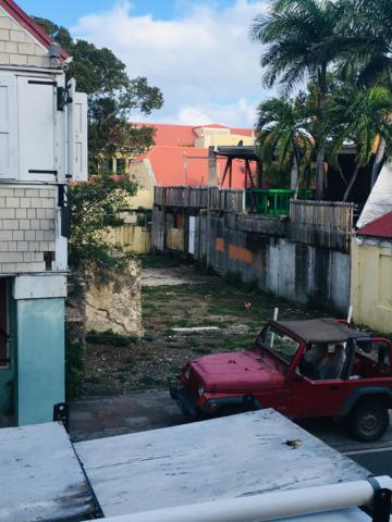 54A Company Street Ch, St. Croix, VI 00820 (MLS #19-148) :: Hanley Team | Farchette & Hanley Real Estate