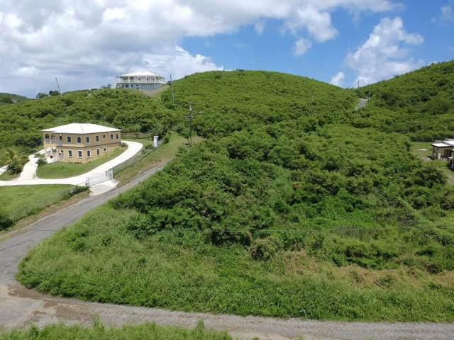 134 Union & Mt. Wash Ea, St. Croix, VI 00000 (MLS #19-1483) :: Hanley Team | Farchette & Hanley Real Estate