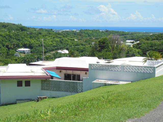 124 Mary's Fancy Qu, St. Croix, VI 00820 (MLS #19-1524) :: Hanley Team | Farchette & Hanley Real Estate
