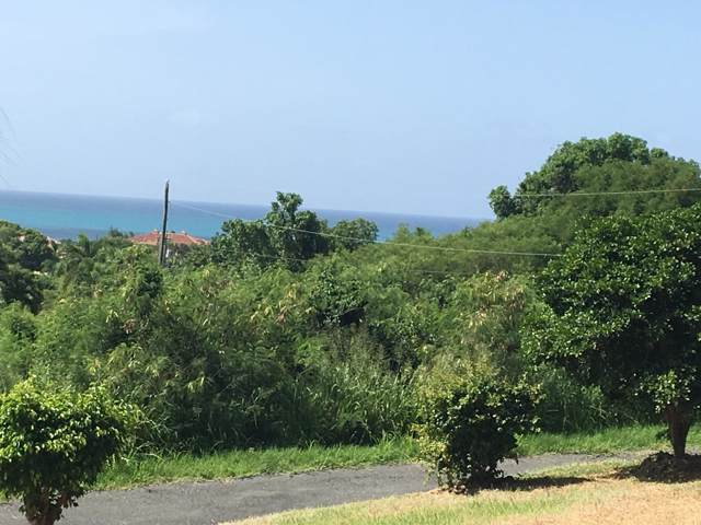 166 Anna's Hope Ea, St. Croix, VI 00820 (MLS #19-1526) :: Coldwell Banker Stout Realty