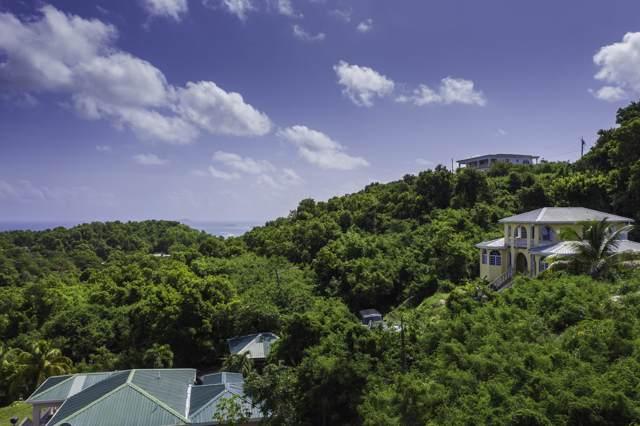 86G La Grande Prince Qu, St. Croix, VI 00820 (MLS #19-1533) :: Hanley Team | Farchette & Hanley Real Estate