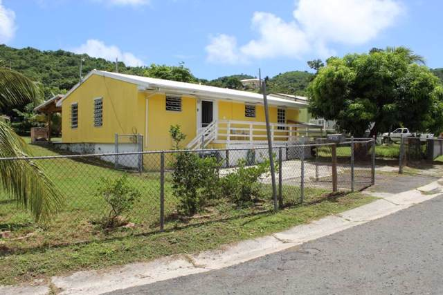 9 of 45 Eliza's Retreat Ea, St. Croix, VI 00820 (MLS #19-1535) :: Hanley Team | Farchette & Hanley Real Estate